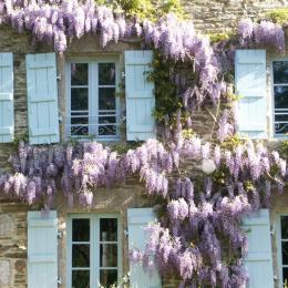 Façade sud - Location de vacances - Moëlan-sur-Mer