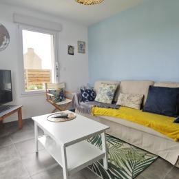 salon TV avec internet - Location de vacances - Plougoulm