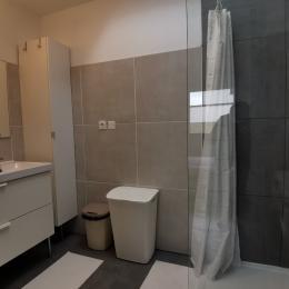 salle d'eau communicante a la chambre avec double vasque, douche à l'italienne et lave linge - Location de vacances - Locmaria-Plouzané
