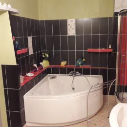 Gîte des Chaumes au coeur du bocage bourbonnais en Auvergne salle de bains rdc - Location de vacances - Buxières-les-Mines