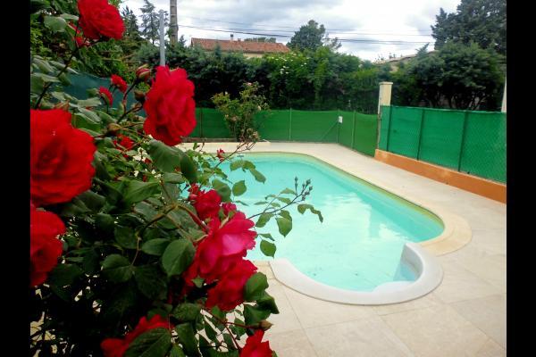 piscine sécurisée et clôturée - Location de vacances - Lézan