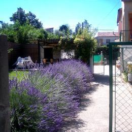jardin avec lavande - Location de vacances - Lézan