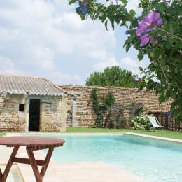 la piscine vue de la terrasse - Location de vacances - Vauvert