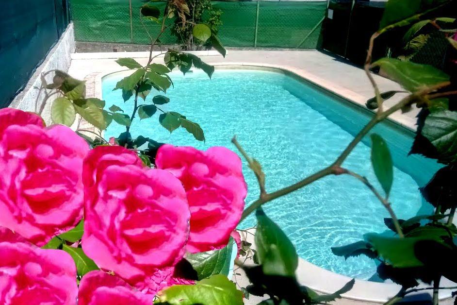 piscine sécurisée - Location de vacances - Lézan