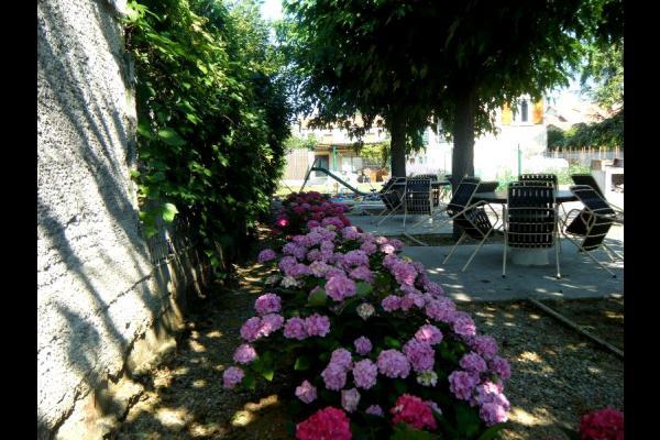 Hortensias - Location de vacances - Lézan