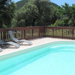 La piscine privée avec vue sur la montagne - Location de vacances - Saint-Clément
