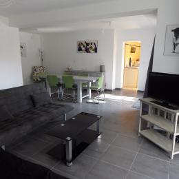salon, salle à manger, ouverture cuisine - Location de vacances - Nîmes