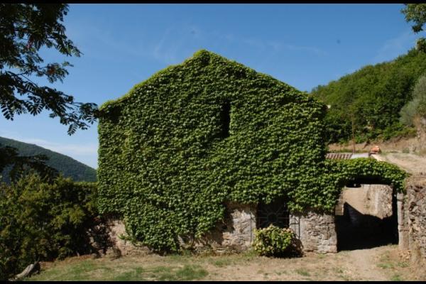 - Location de vacances - Saint-Martial