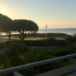 Cadre arboré... vue depuis la mer de la Résidence - Location de vacances - Le Grau-du-Roi