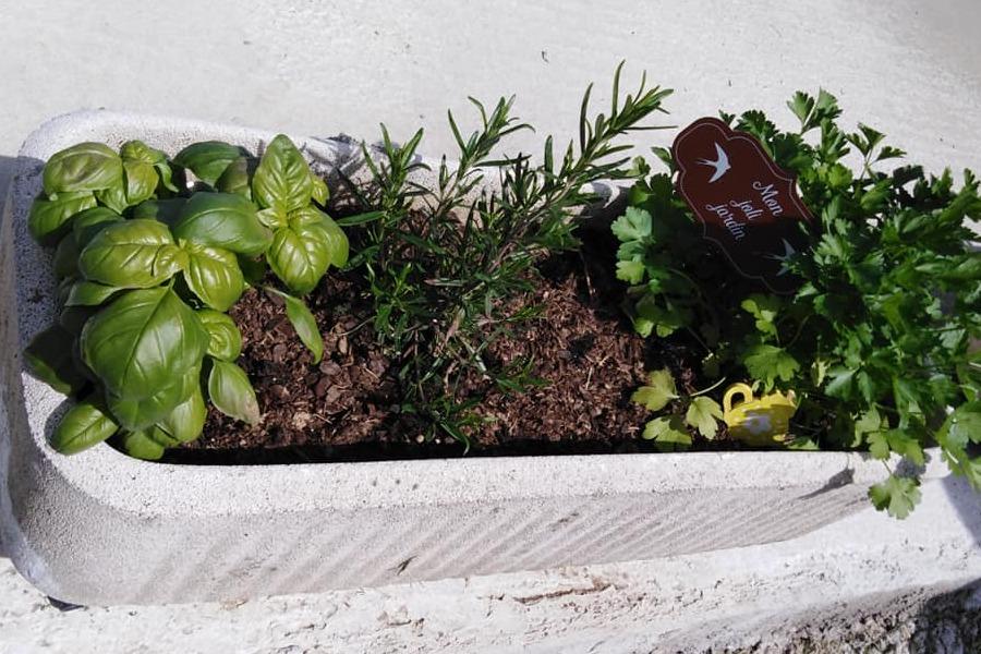 Le petit jardin d'aromatique pour vous à L'Oustal - Location de vacances - Saint-Bénézet