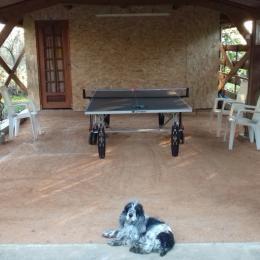 L'intimité du jardin, pour abriter vos joies familiales. - Location de vacances - Arpaillargues-et-Aureillac