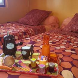 Villa des Violettes-Toulouse-chambre Rapsodie-version chambre twin - Chambre d'hôtes - Toulouse