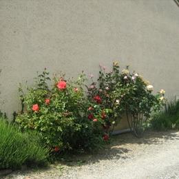 cuisine      porte salle d'eau - Location de vacances - Lherm
