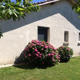 - Location de vacances - Revel Saint Férréol