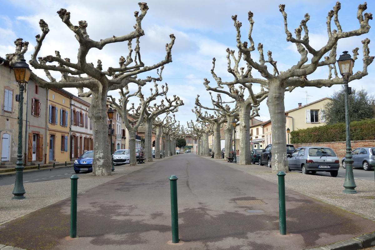 Portet sur Garonne - Location de vacances - Portet-sur-Garonne