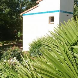 Vue du Pigeonnier depuis le jardin - Chambre d'hôtes - Villaudric