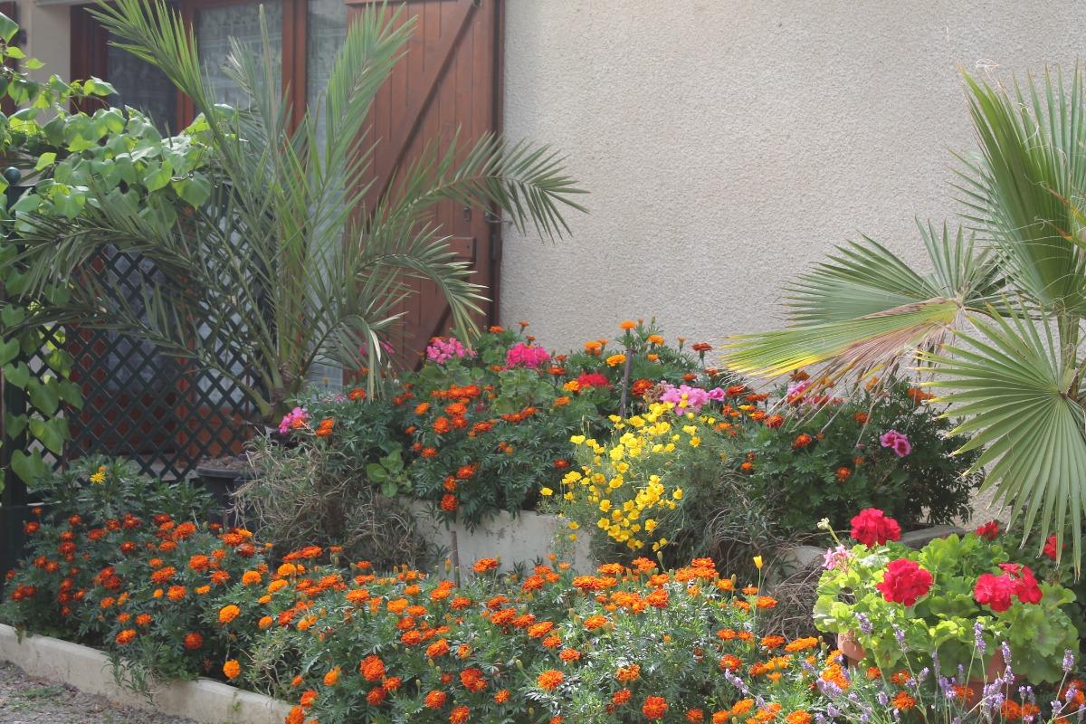 terrasse fleurie - Location de vacances - Goutz