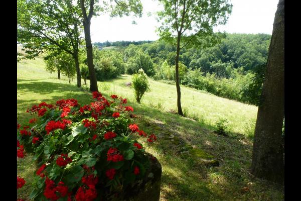 Vue sur la nature - Location de vacances - Montesquiou