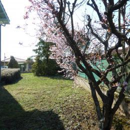 jardin privatif - Location de vacances - Lectoure