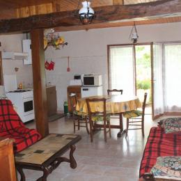 Séjour cuisine salon - Location de vacances - Goutz
