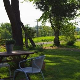 matin de printemps en Gascogne, sérénité,  - Location de vacances - Bouzon-Gellenave