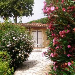 La Terrasse - Chambre d'hôtes - Lectoure