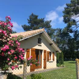 - Location de vacances - Lacanau