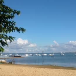 Gîte Isalain sur le Bassin d'Arcachon - Location de vacances - Arcachon