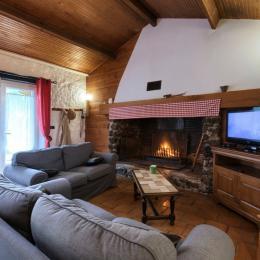 Pièce de vie avec cheminée - Location de vacances - Mios
