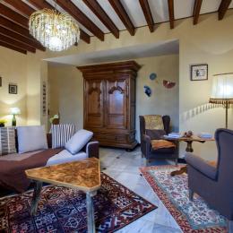 Salon (TV et canapé-lit) - Location de vacances - Saint-Hippolyte