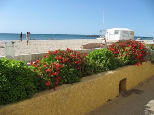 promenade rive drioite - Location de vacances - PALAVAS-LES-FLOTS