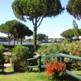 Vue de la terrasse sur jardin et étang - Location de vacances - La Grande-Motte