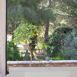 vue de la chambre - Chambre d'hôtes - Sète