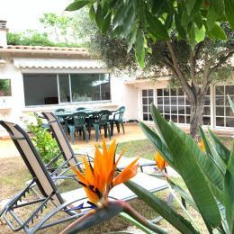 Jardin - Location de vacances - Sète