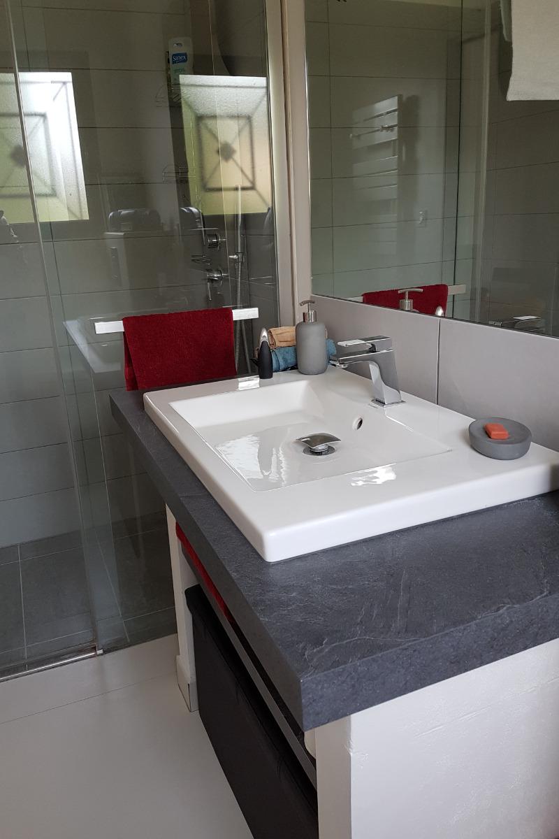 La salle d'eau avec douche italienne - Chambre d'hôtes - Valflaunès