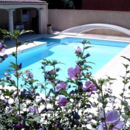 piscine - Chambre d'hôtes - Frontignan