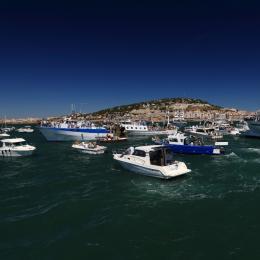 Fête de la Saint Pierre - Location de vacances - Sète