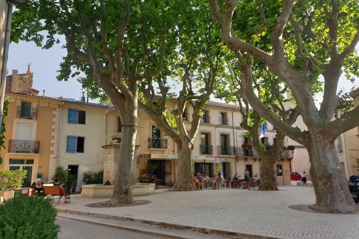 maison cazouline avec les volets bleus sur la place du village avec ses platanes majestueux - Location de vacances - Cazouls-d'Hérault