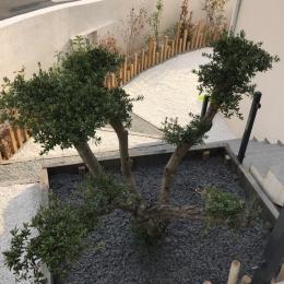 jardin aménagé - Location de vacances - Thézan-lès-Béziers