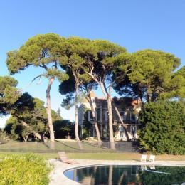 - Location de vacances - Marseillan