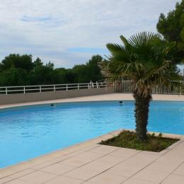 Piscine dans la résidence - Location de vacances - Sète