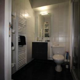 Salle d'eau + sèche serviette + étagère rangement + Cabine douche - Location de vacances - La Grande-Motte