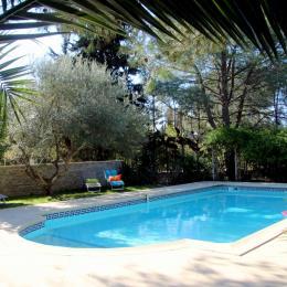 la piscine - Chambre d'hôtes - Prades-le-Lez