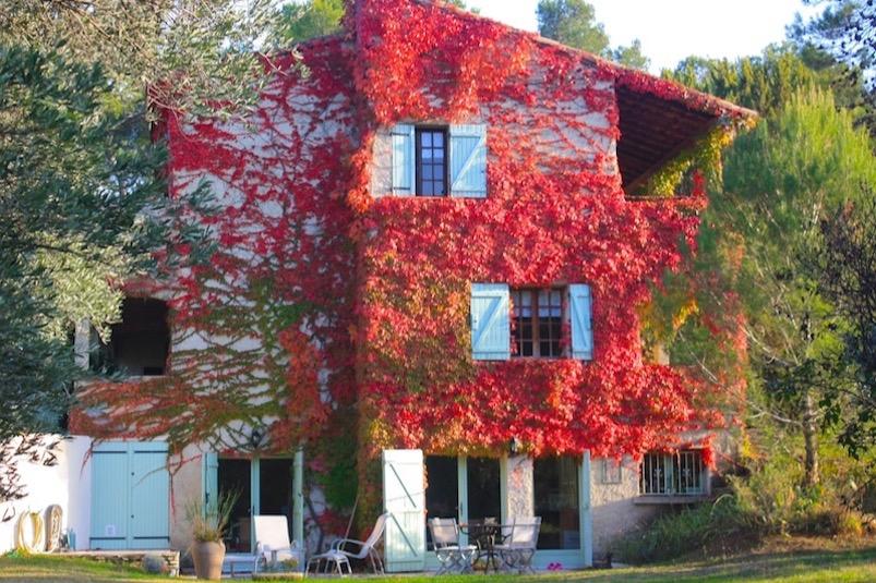 Gite Plomidi au milieu des pins et des vignes - Location de vacances - Prades-le-Lez