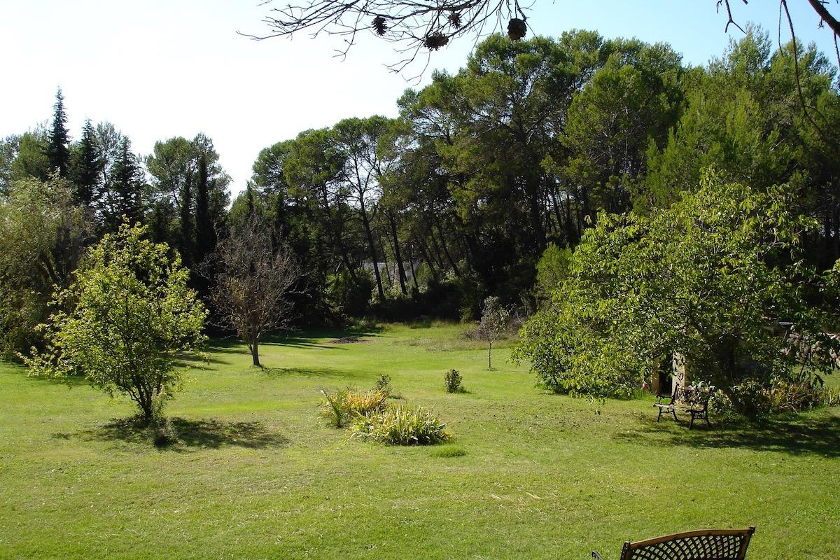 Un bout du jardin du gîte Plomidi - Location de vacances - Prades-le-Lez