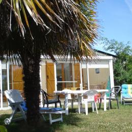 à l'ombre des palmiers - Location de vacances - Cancale