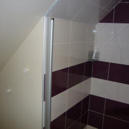 La douche de la salle d'eau - Chambre d'hôtes - Hédé - BAZOUGES