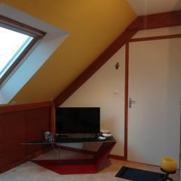 tv salon - Location de vacances - La Richardais