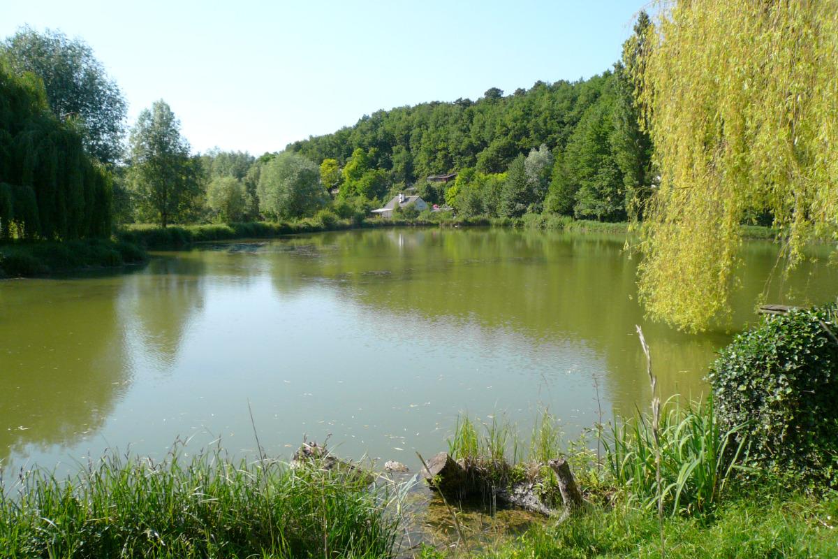 Vue de l'étang - Location de vacances - Saint-Épain