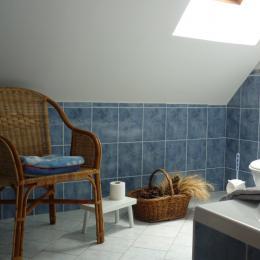 salle de bain chambre n2 - Chambre d'hôtes - Civray-de-Touraine